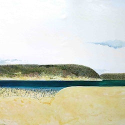 Inlet with cockatoo john graham bluethumb art