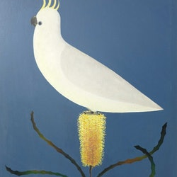 Cockatto and banksia john graham bluethumb art