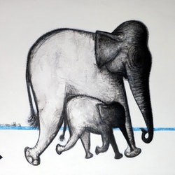 Elephant and babe john graham bluethumb art