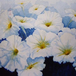 Petunias in blue sue lederhose bluethumb art