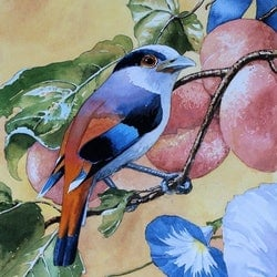Roller with fruit and flowers graeme whittle bluethumb art