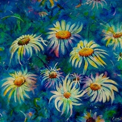 A daisy a day cathy gilday bluethumb art