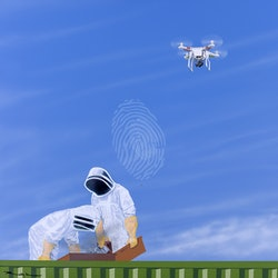 Beekeepers and drone roddy kerr bluethumb art.jpg?w=250&h=250&fit=crop&mark=https%3a%2f%2fimages.bluethumb.com.au%2fbluethumb art assets%2fwatermark%2fbt watermark