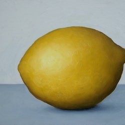 Still life lemon damien venditti bluethumb art