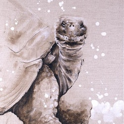 Relentless the tortoise the hare emma ward bluethumb art