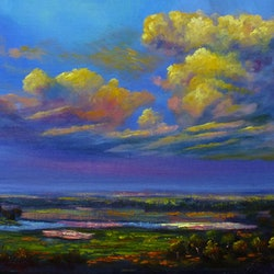 Storm on the wetlands northern territory christopher vidal bluethumb art