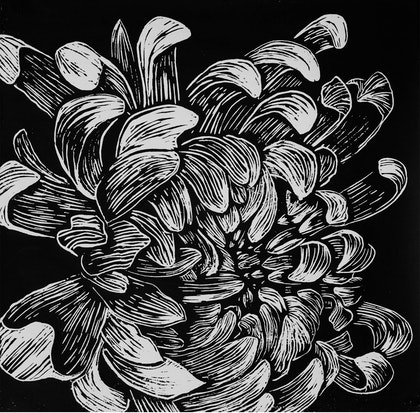 Chrysanthemum flower, linocut print Ed. 10 of 10