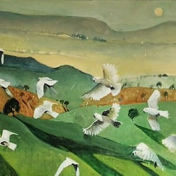 Flock of cockies susan trudinger bluethumb art