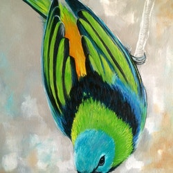 Little bird emma ward bluethumb art