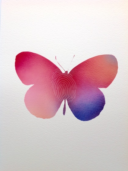 Spray Butterfly2