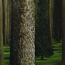 Small boy pees on tall tree donna christie bluethumb art