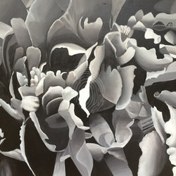 Peony in black and white tracey miller bluethumb art.jpg?w=250&h=250&fit=crop&mark=https%3a%2f%2fimages.bluethumb.com.au%2fbluethumb art assets%2fwatermark%2fbt watermark