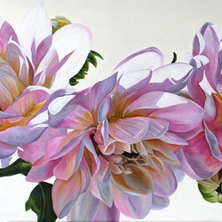 Dahlias freya powell bluethumb art.jpg?ixlib=rails 2.1