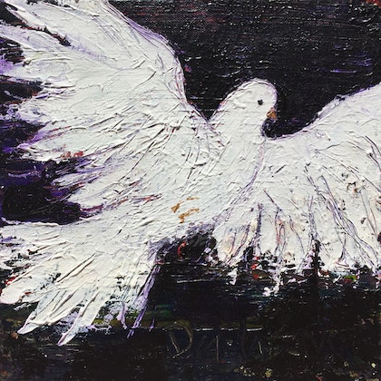 Colombe / Dove – Messenger of LOVE & PEACE