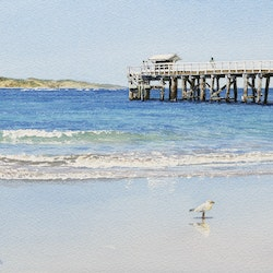 Pt lonsdale and the rip francis mcmahon bluethumb art