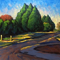Pass by bowral later afternoon fangmin wu bluethumb art