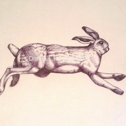 Running bunny jan 2017 original ink drawing donna huntriss bluethumb art