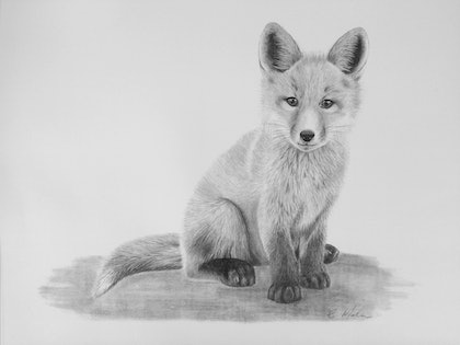 Little Fox A3 Limited Edition Print (Ed. 3 of 50)