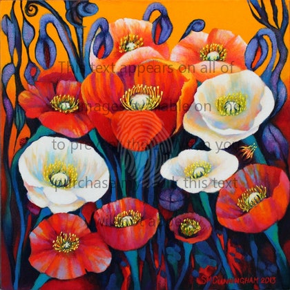 IceLand Poppies #3