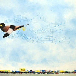 Song in a myna key john graham bluethumb art