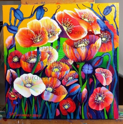 IceLand Poppies #4 - temporary image