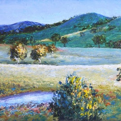 Landscape near gundagai jan matson bluethumb art
