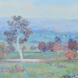 Autumn light brindabellas jan matson bluethumb art