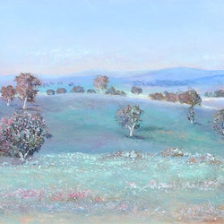 Afternoon light near wagga new south wales jan matson bluethumb art