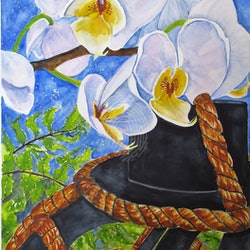 Orchid in the moonlight cynthia copley bluethumb art.jpg?w=250&h=250&fit=crop&mark=https%3a%2f%2fimages.bluethumb.com.au%2fbluethumb art assets%2fwatermark%2fbt watermark