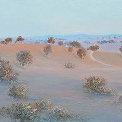 Late afternoon near wagga wagga jan matson bluethumb art