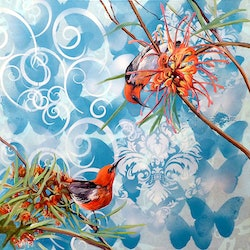 Scarlet becomes you scarlet honeaters susan skuse bluethumb art