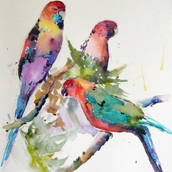 Parrots in the garden christine lawrence bluethumb art