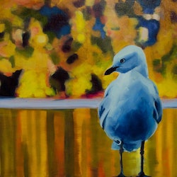 Blue gull karen bloomfield bluethumb art