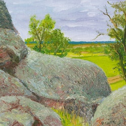 Mad dan morgan s lookout southern nsw dai wynn bluethumb art