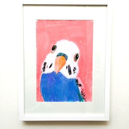 Blue Budgie (framed)
