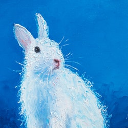 White bunny jan matson bluethumb art 84dd