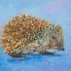 Hedgehog jan matson bluethumb art a8b1