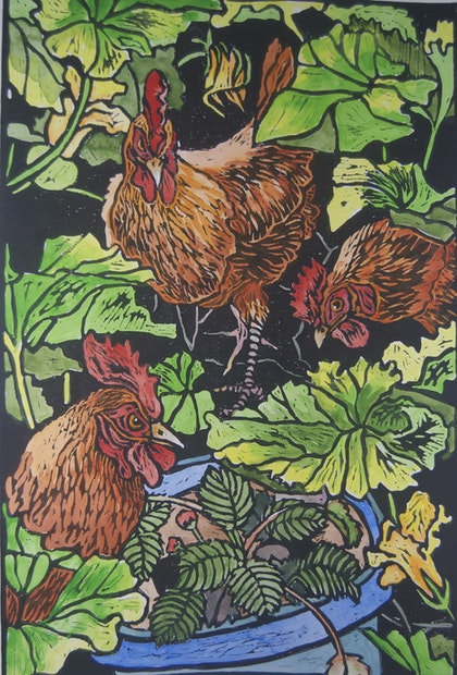 Chooks in strawberry patch