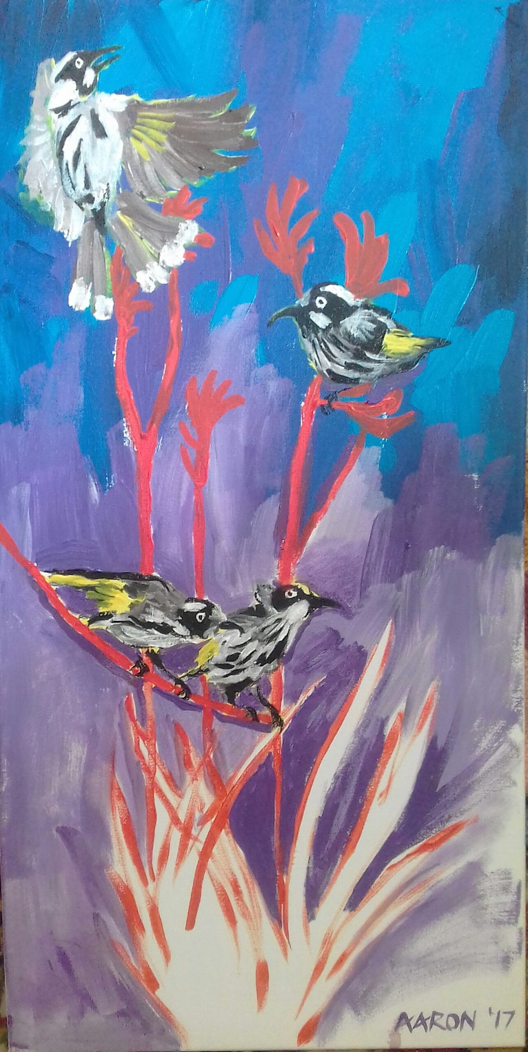 New Holland Honey Eater Happiness