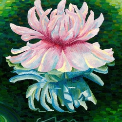 Giant waterlily victoria amazonia in the gardens elisabeth howlett bluethumb art c0a5.jpg?ixlib=rails 2.1