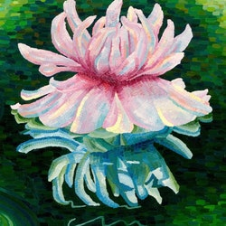 Giant waterlily victoria amazonia in the gardens elisabeth howlett bluethumb art c0a5
