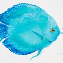 Discus fish pair by jan matson paintings for sale for Jans tropical fish