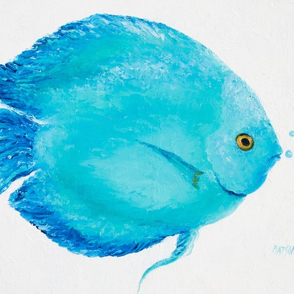 Turquoise Tropical Fish