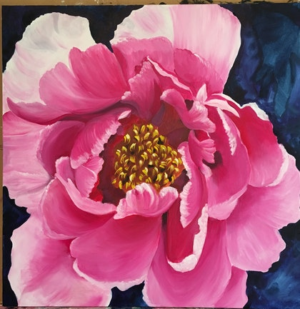 Peony flower of Romance and Riches