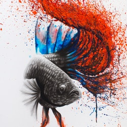 Azul gourami copy ashvin harrison bluethumb art 3908