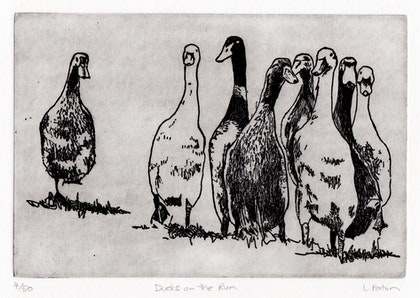 Ducks on the Run (Etching) Ed. 4 of 50