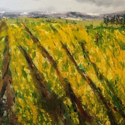 The fields are alive with the mass of golden daffodils gently swaying in the breeze margaret morgan watkins bluethumb art b227