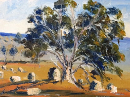Along the Lancefield-Woodend Road