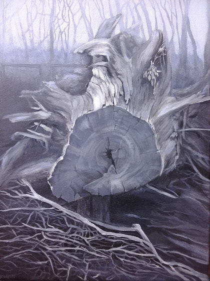 Tree fallen (black and white landscape)