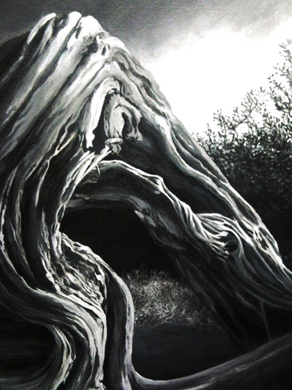 Black and white twisted tree